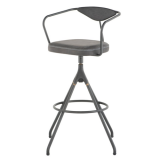 Akron Bar Stool with Backrest